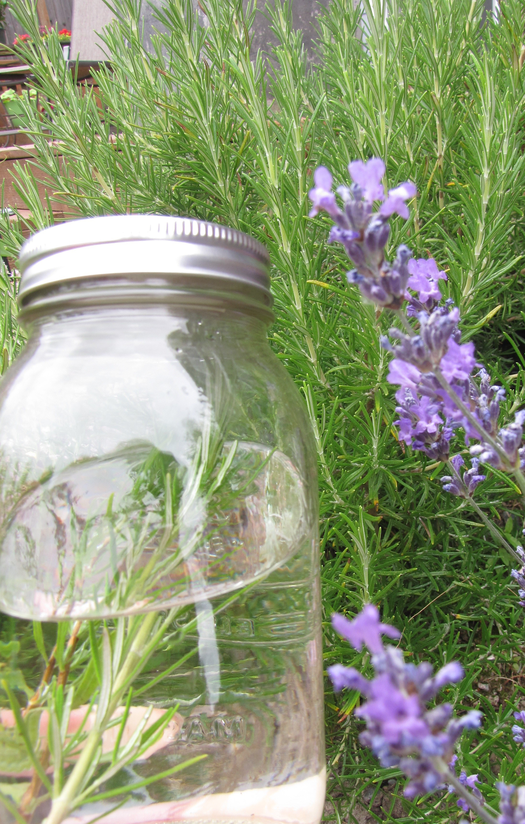 Lavender & Rosemary Infused Vodka
